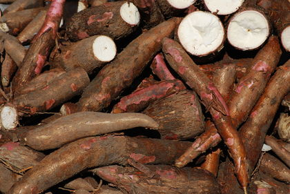 Cassava as Nigeria's raw material export. Image source fmi.gov