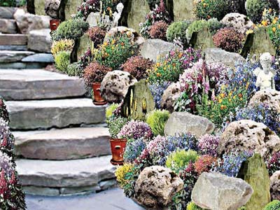 A rockery built alongside steps
