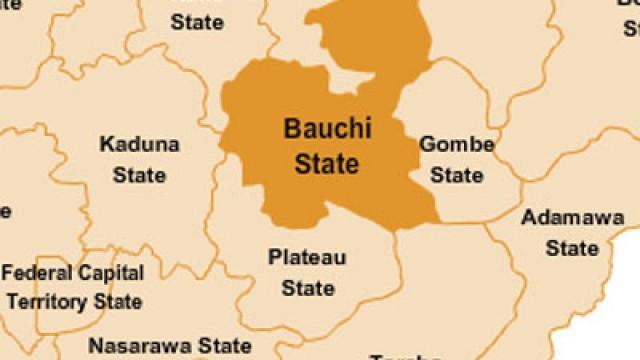 Bauchi finance commissioner resigns - Guardian