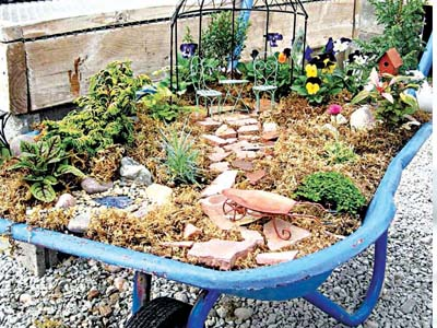 Miniature garden in a wheelbarrow