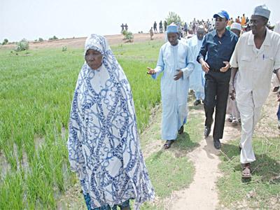 Adesina inspecting rice farm with Hajia Baladi, leader of women rice farmers at Bokolori dam farm project in Zamfara State in 2013 planting season