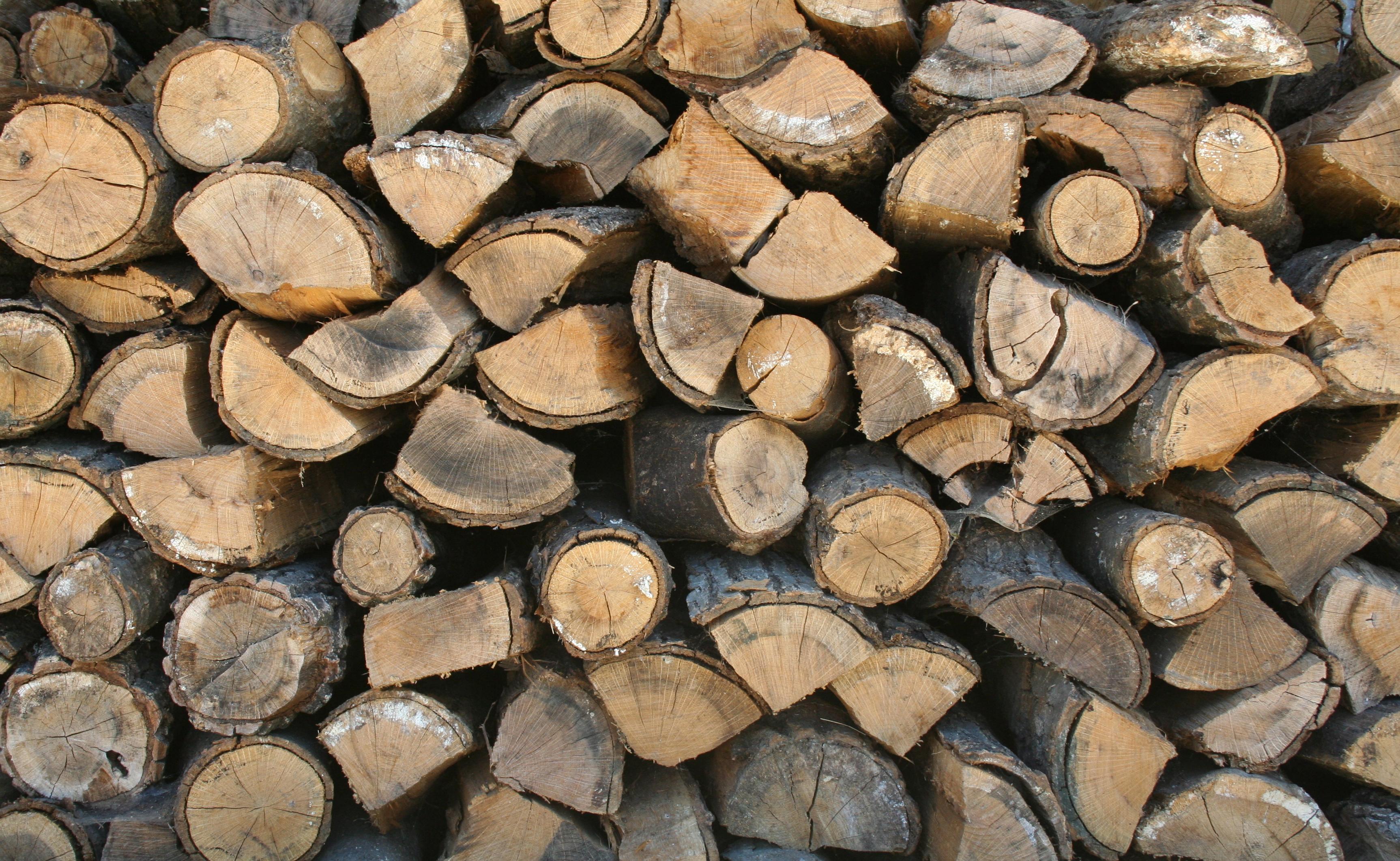 firewood-02