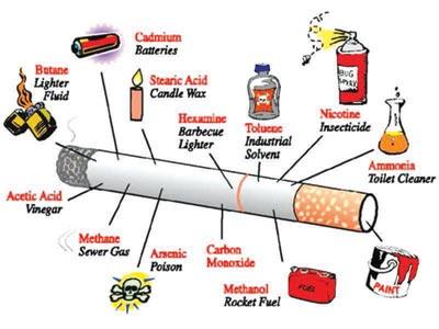 Cigarette.. the poisons in a stick of cigarette