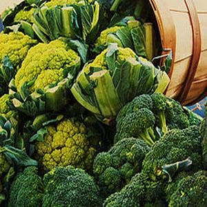 Cruciferous Vegetables. Photo; wikimedia