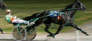 Trotting race. Photo; harnessracinginfo