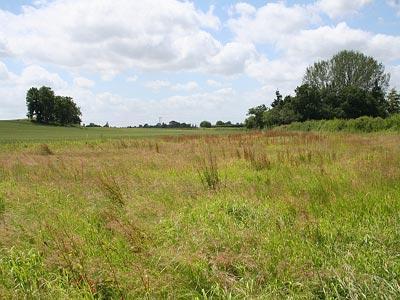 land-wikimedia
