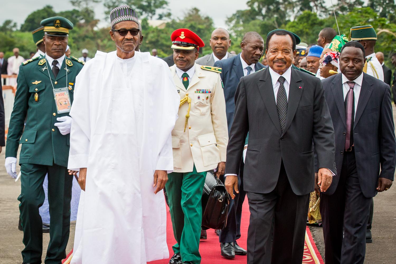 Cameroon 8