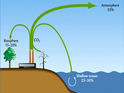diagram carbon sources and sinks wire diagram for receptacle and plug switch combo 'carbon sink' detected underneath world's deserts ...
