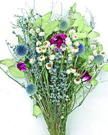Dried Flowers 4 Copy