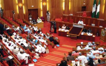 Floor-of-the-Nigeria-Senate-360x225