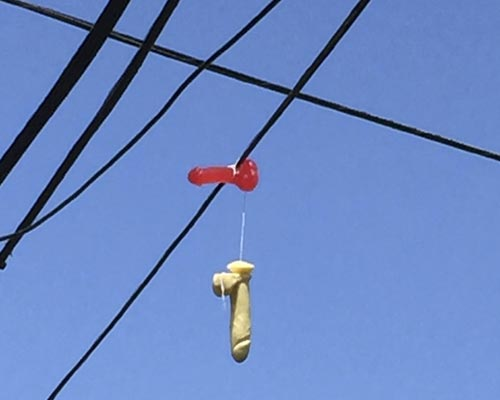 Two adult toys hang over power lines above a residential street in Portland, Oregon. Photo: japantimes