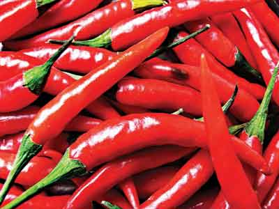 Hot Chilli Pepper May Provide Novel Treatment For Obesity Features The Guardian Nigeria