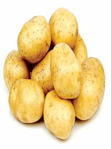 Potatoes... researchers suggest carbohydrate consumption, particularly in the form of starch, was critical for the extraordinary development of the brain over the past million years. They say starches would have been readily available to ancestral human populations in the form of potatoes as well as in seeds, some fruits and nuts.                                       PHOTO CREDIT: google.com