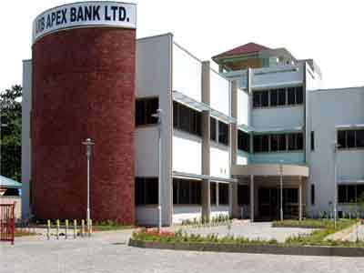_apex-bank