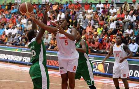Tigress-FIBA