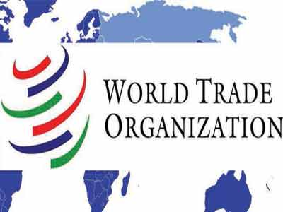 WTO---Copy