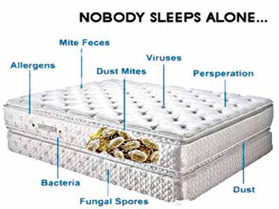 Millions Of Mattresses Are Swarming With Bacteria Mould