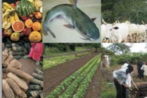 agric-organic