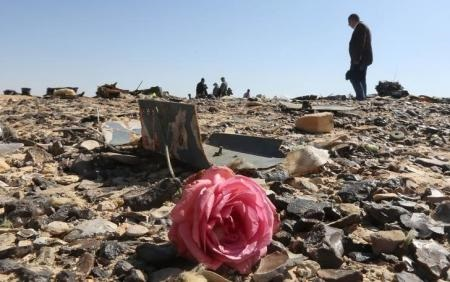 A flower is seen near debris at the crash site of a Russian airliner in al-Hasanah area in El Arish city, north Egypt, November 1, 2015.   REUTERS/Mohamed Abd El Ghany