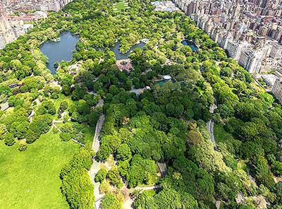 Central Park from a height, New York City, USA      Courtesy www.inthenewyork.com