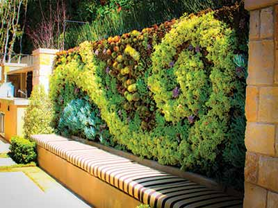 Vertical gardens and Green Walls are the trend in urban landscape