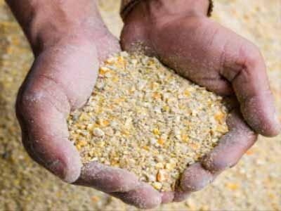 PHOTO: www.foodingredientsfirst.com