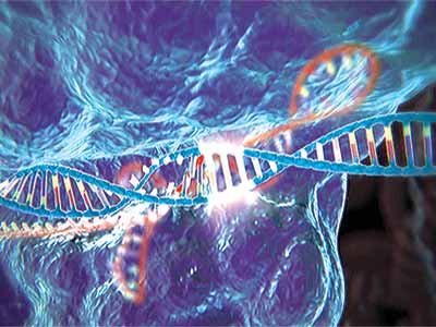 Gene editing...nearly 500 scientists, ethicists, legal experts and advocacy groups from more than 20 countries came together in Washington DC, United States, last week to produce guidelines for the use of gene editing in humans                                         PHOTO CREDIT: google.com/search