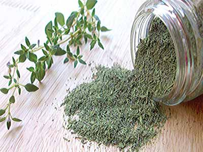 Thyme... New research reveals how a substance present in thyme and parsley - apigenin - triggers formation of human brain cells and boosts connections between them. PHOTO CREDIT: GOOGLE.COM/SEARCH