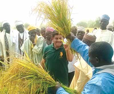 Managing Director, Contec Global Agro Ltd, Mr. Thomas Chackunkal waves the bunch of rice harvested from the AGAN demonstration organic farm in Emigi Village, Katcha LGA, Niger State amid traditional rulers and local farmers during the official flag-off of harvest of rain-fed rice grown using bio-fertilizers and bio-pesticides