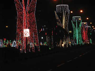 Tree-lined-Drive--in-Xmas-decorative