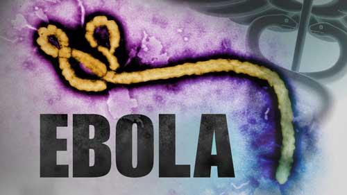 ebola-virus-1