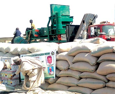 Stack of grains on display at an agricultural forum; Need for the Federal Government to release funds to increase food production and check scarcity