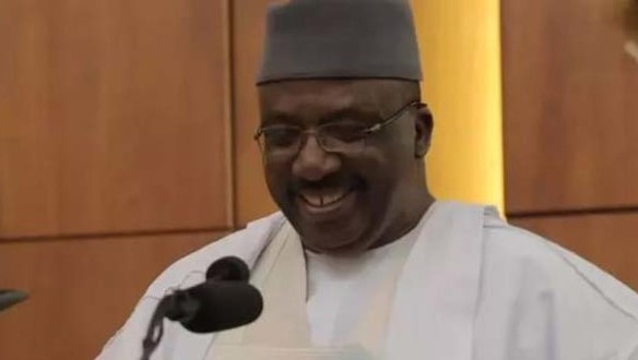 Minister of Interior, Abdulrahman Bello Dambazau