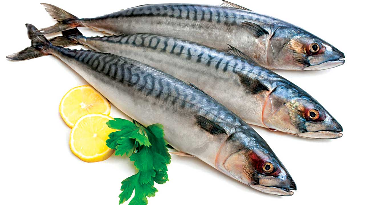 fatty fish may curb blindness risks for diabetics study