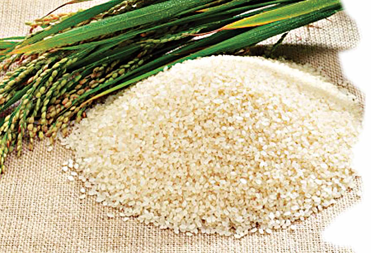 how to cook grain rice
