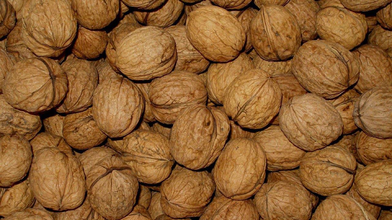 autumnstuff_walnuts
