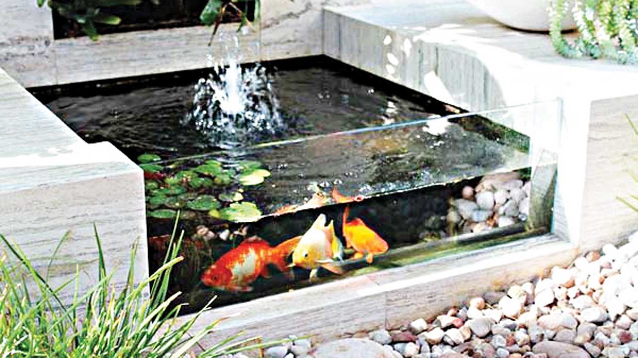 Contemporary garden design includes aquarium which brings liveliness and color to garden.