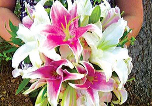 Bridal bouquet  with  Madonna  lilies.