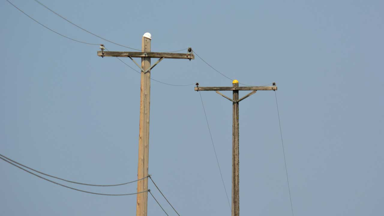 NEMSA bans use of untreated electricity wooden poles — Business ...