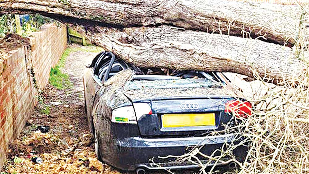 A car in Tonbridge, Kent was destroyed when a tree trunk crashed down   PHOTO: YAHOO
