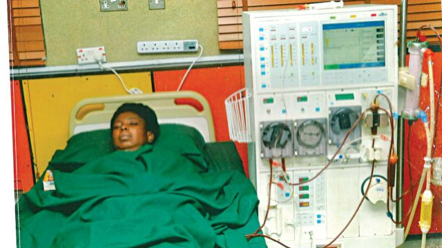 Koko in hospital bed