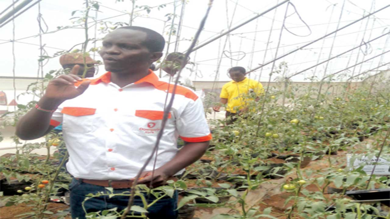 Walumbe explaining processes in the greenhouse