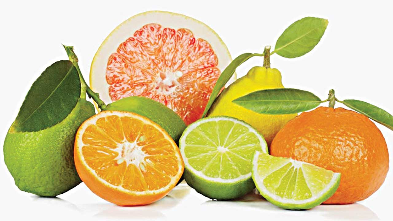 Citrus fruits such as oranges, tangerine, grapefruit, lemon, lime are replete with vitamin C PHOTO CREDIT: google.com/search