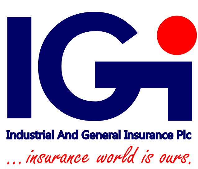 igi website logo