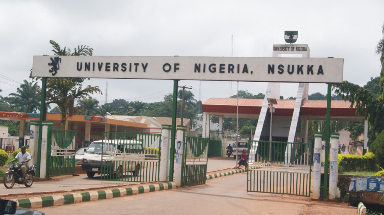 Image result for the university of nigeria