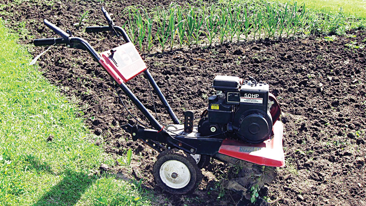 Frequent tillage disrupts soil's life and structure