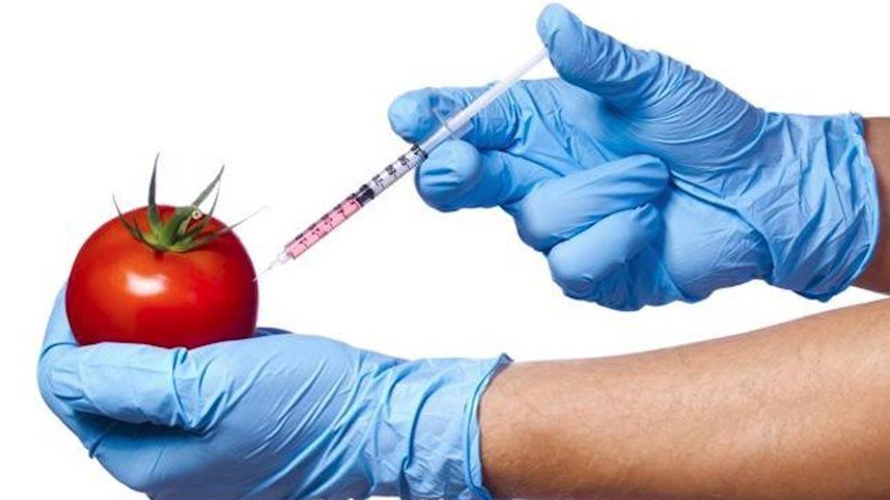GMO good. PHOTO: google.com/search