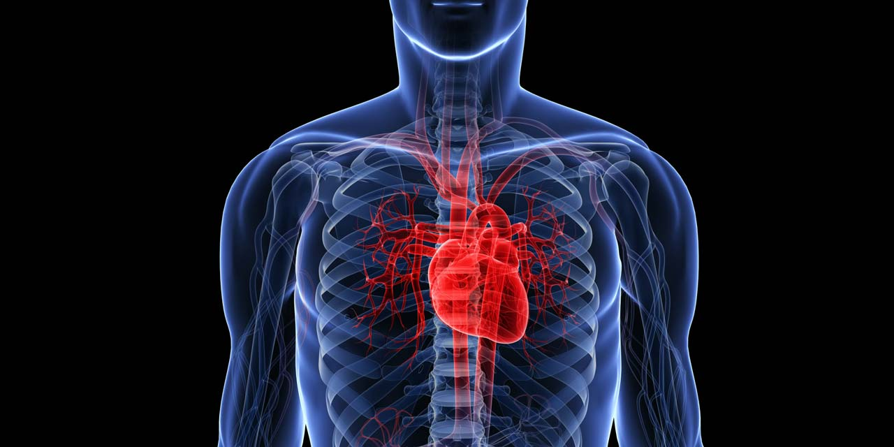 Physical Exercise Healthy Eating Good For Heart Features The