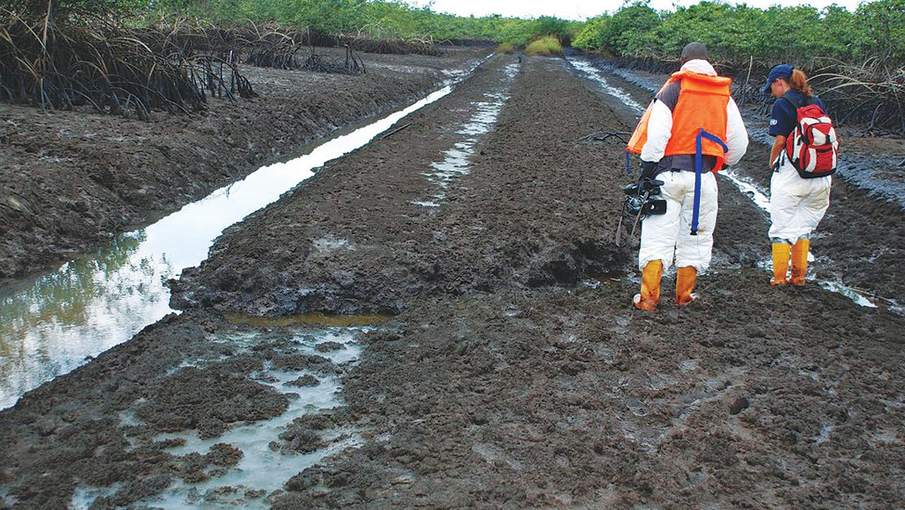 Cleanup exercise in Ogoniland 										  PHOTO: GOOGLE
