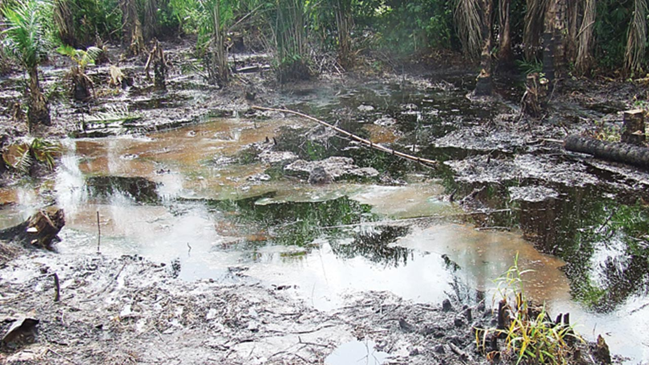Ogoni oil spill for clean-up